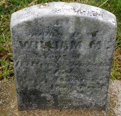 William M Eck