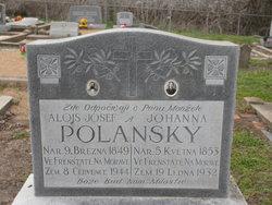 Alois Josef Polansky