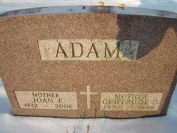Joan E <i>Gauger</i> Adam