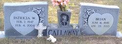 Brian Callaway
