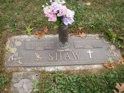 Albert E. Shaw