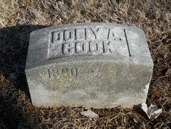 Dolly Ann Cook