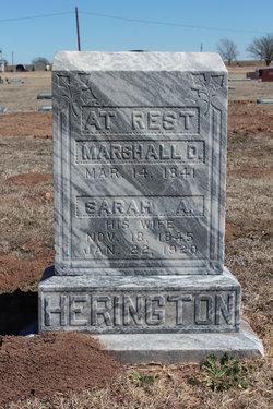 Marshall D Herrington