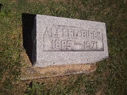 Alfred Birck