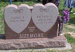 Carol Jean <i>Tidler</i> Sizemore