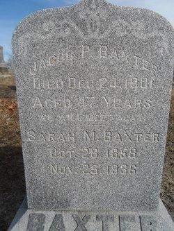 Peter Jacob Baxter