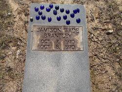 Jamison Wade Brantley
