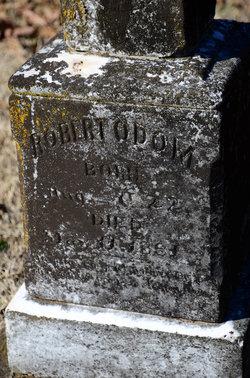Pvt Robert Henry Bob Odom