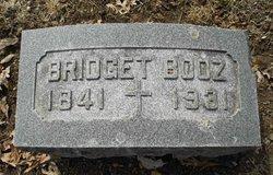 Bridget <i>Daily</i> Booz
