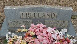 James Furman Freeland