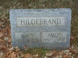 Amos Hildebrand