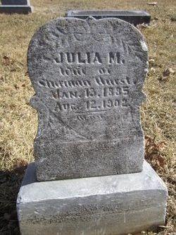 Julia M <i>Patterson</i> Hurst