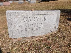 Louisa <i>Doan</i> Carver