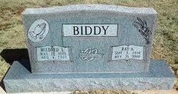 Ray Allen Biddy
