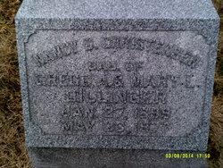 Nancy B <i>Dillinger</i> Christensen
