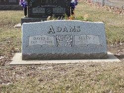 David LeRoy Adams