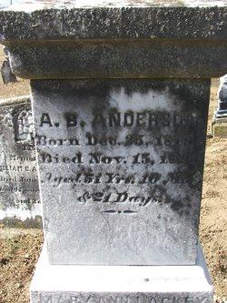 Alexander B. Anderson