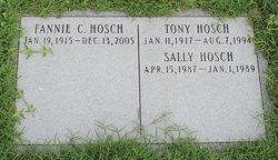 Anthony E Hosch