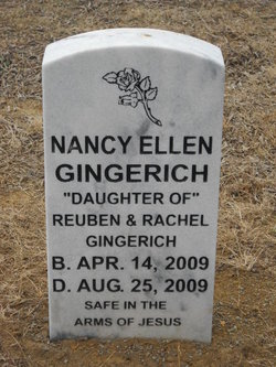 Nancy Ellen Gingerich