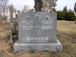 S 1/c Michael C. Gallo