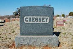 Leona <i>Chesney</i> Banks