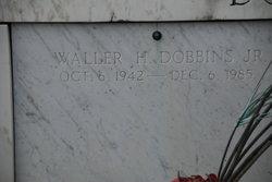 Walter Hilbert Dobbins