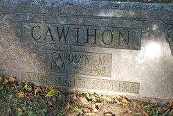 Kenneth Scott Cawthon