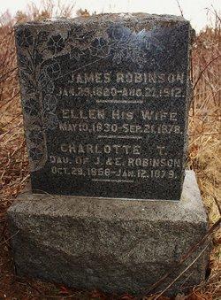 Ellen <i>Brown</i> Robinson