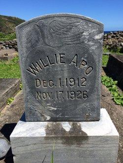 Willie Apo