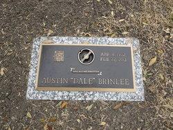 Austin Dale Brinlee