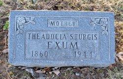 Theadocia <i>Sturgis</i> Exum