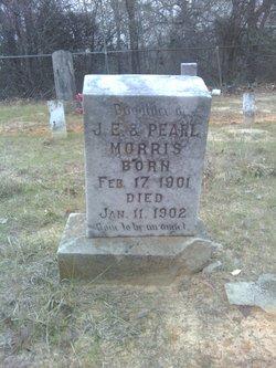 Lottie Morris
