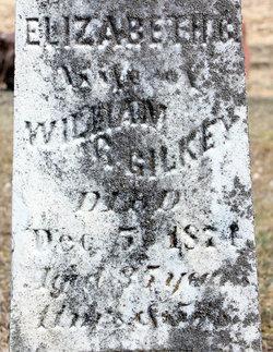 Elizabeth V <i>Waklee</i> Gilkey