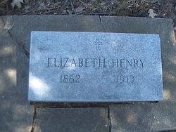 Nancy Elizabeth Lizzie <i>Rock</i> Henry