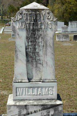 Theodore Matthews Teddy Williams