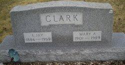 Mary A Clark
