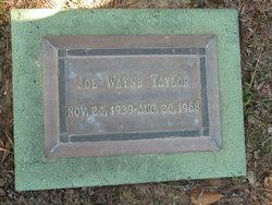 Joe Wayne Taylor