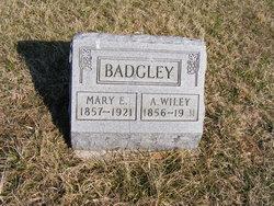 Albert Wiley Badgley