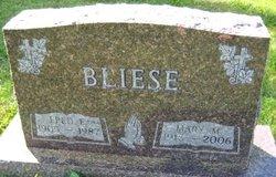 Fred Edward Bliese