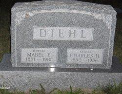Mabel Estella <i>Rauhauser</i> Diehl