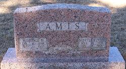 Myrtle <i>Kisner</i> Amis