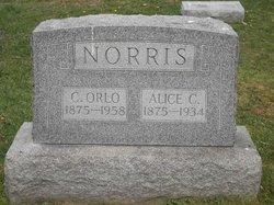 Alice C. Norris