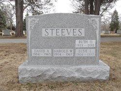 David Anthony Steeves