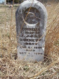Cornelia Burnett