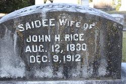 Lou Saidee Saidee <i>Dunaway</i> Rice