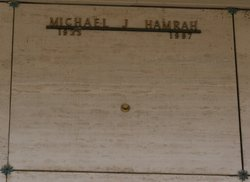 Michael J Hamrah