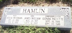 James William Hamlin
