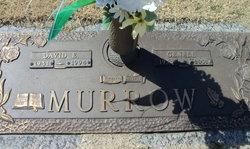 David E. Murrow