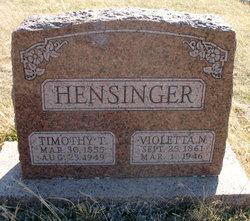 Violetta <i>Neikirk</i> Hensinger