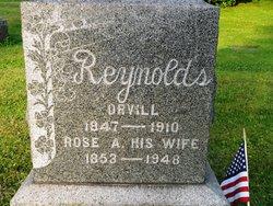 Rose Anna? <i>Albright</i> Reynolds